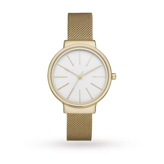 Skagen Ancher Steel Mesh Watch SKW2477